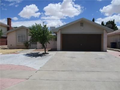 El Paso Single Family Home For Sale: 1786 Judith Resnik Drive
