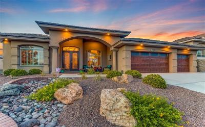 El Paso Single Family Home For Sale: 6713 Capitan Ridge Drive