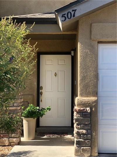 Horizon City Single Family Home For Sale: 507 Sun City Place