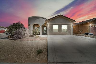 Single Family Home For Sale: 14273 Andre Agassi Drive