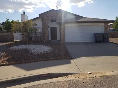 El Paso TX Single Family Home For Sale: $124,000
