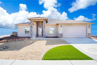 El Paso Single Family Home For Sale: 972 Willow River Drive