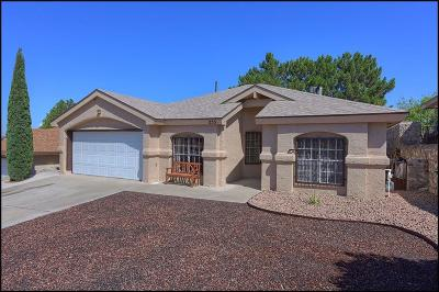 Single Family Home For Sale: 253 Arisano Drive