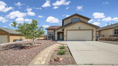 El Paso Single Family Home For Sale: 6957 Bruce Bissonette Drive