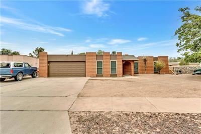 Horizon City Single Family Home For Sale: 445 Penroy Lane