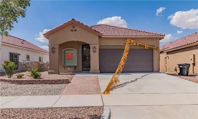 Horizon City Single Family Home For Sale: 13579 Bradford Street