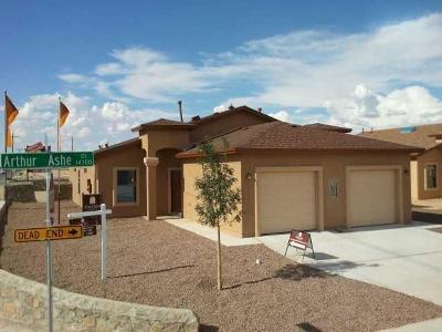 Multi Family Home For Sale: 14301 Arthur Ashe Court #A & B