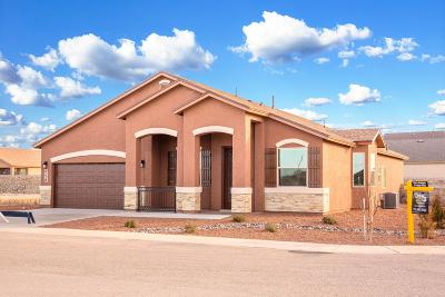 El Paso TX Single Family Home For Sale: $266,950