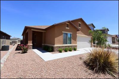 El Paso Single Family Home For Sale: 7409 Dewberry Drive