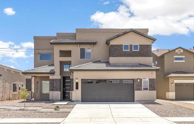 El Paso Single Family Home For Sale: 1746 Breeder Cup Way
