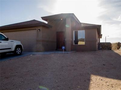 El Paso Single Family Home For Sale: 2441 Damsel Point Place
