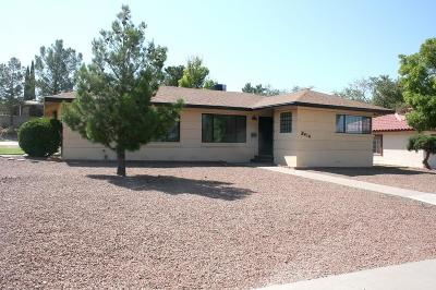 El Paso Single Family Home For Sale: 3414 Stanton Street