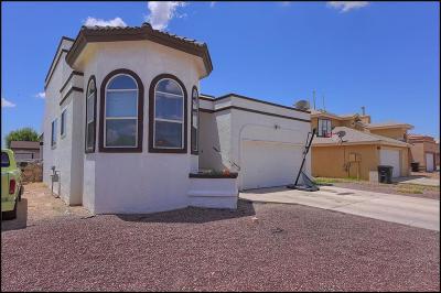 Horizon City Single Family Home For Sale: 705 Paseo Sereno