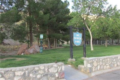 El Paso Single Family Home For Sale: 4800 Stanton Street #202