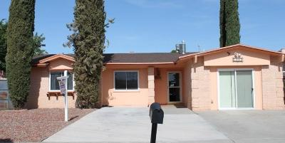 El Paso Single Family Home For Sale: 3413 Wayside Street