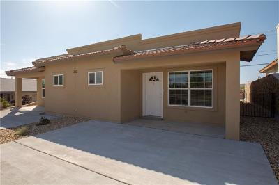 El Paso Single Family Home For Sale: 233 Atlantic Road #B