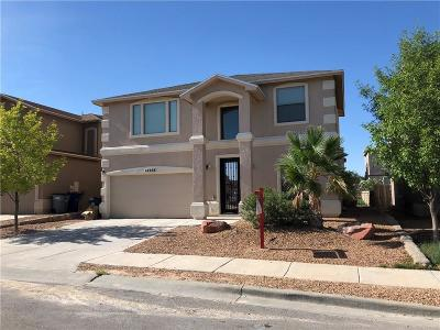 Single Family Home For Sale: 14208 Otter Point Drive
