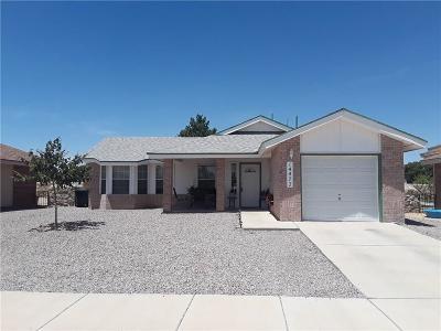 Horizon City Single Family Home For Sale: 14477 Thayer Pease Avenue