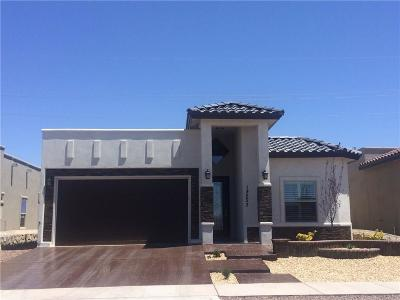 El Paso Single Family Home For Sale: 732 Sculcoates Street