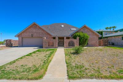 El Paso Single Family Home For Sale: 11554 Laura Marie Drive