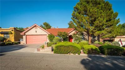 El Paso Single Family Home For Sale: 616 El Gusto Drive