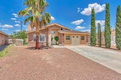 El Paso Single Family Home For Sale: 9385 Bellagio Lane