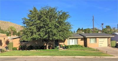 El Paso Single Family Home For Sale: 1006 Moore Street