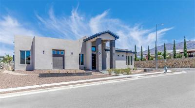 El Paso Single Family Home For Sale: 6301 Franklin Bluff Drive
