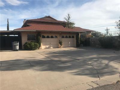 Single Family Home For Sale: 10600 Sombra Verde