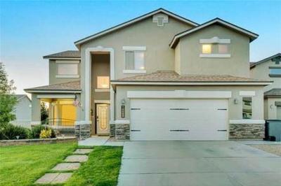Single Family Home For Sale: 14549 Sunny Land Avenue