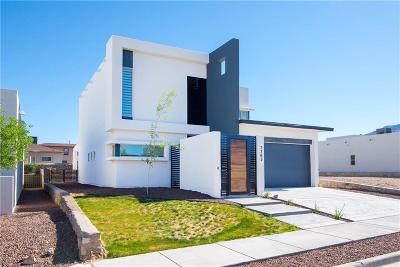 El Paso Single Family Home For Sale: 7365 Golden Sage Drive