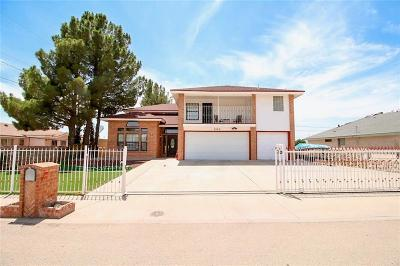 Socorro Single Family Home For Sale: 9769 Galilee Drive