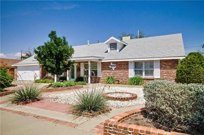 El Paso Single Family Home For Sale: 3010 Kilkenny Road