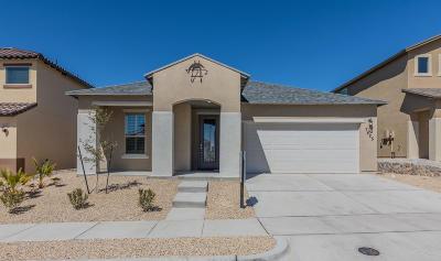 Single Family Home For Sale: 7425 Eagle Vista Drive