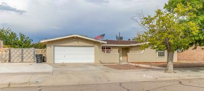 Horizon City Single Family Home For Sale: 14869 Holden Circle