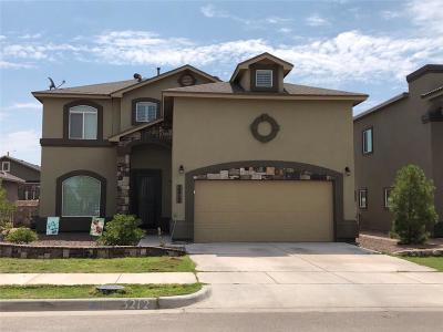Single Family Home For Sale: 3212 Merry Meadow Place