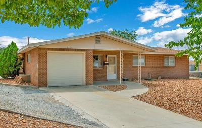 El Paso Single Family Home For Sale: 8724 Magnetic Street