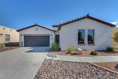 Single Family Home For Sale: 14624 Ciambriello