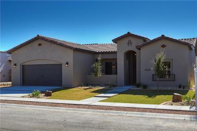 Horizon City Single Family Home For Sale: 2721 Tierra Malaga Road