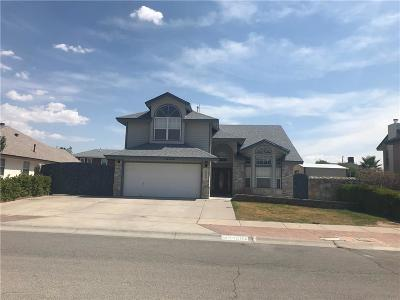 Horizon City Single Family Home For Sale: 14004 Flowering Cactus Place