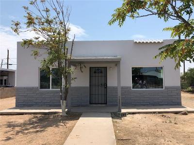 El Paso Single Family Home For Sale: 4728 Sierra Vista Drive