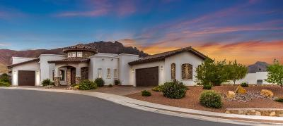 El Paso Single Family Home For Sale: 1268 Hidden Desert Lane