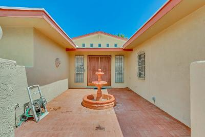 El Paso TX Single Family Home For Sale: $151,633