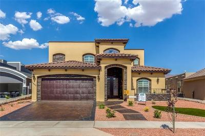 El Paso Single Family Home For Sale: 7841 Enchanted Cliff Drive