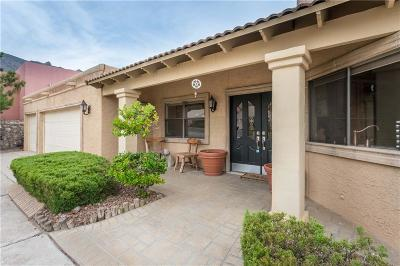 El Paso Single Family Home For Sale: 424 Hollydale Drive