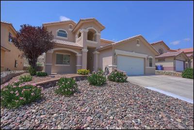 El Paso Single Family Home For Sale: 1005 Via Descanso Drive