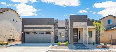 El Paso Single Family Home For Sale: 12522 Breeder Cup Way
