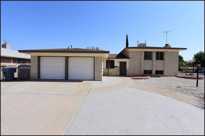 El Paso Single Family Home For Sale: 8709 Lait Drive