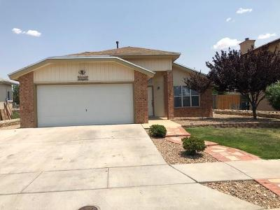 Single Family Home For Sale: 3032 Tierra Valle Drive