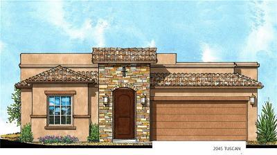 El Paso Single Family Home For Sale: 13197 Tiverton Road